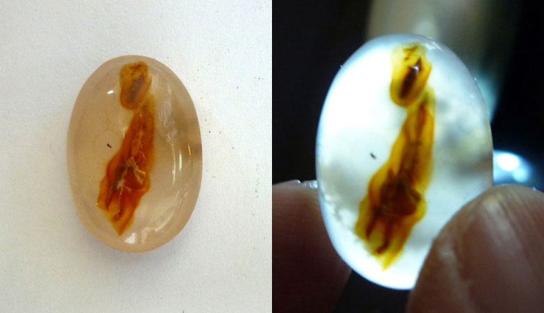 Picture Agate Cab from Indonesia